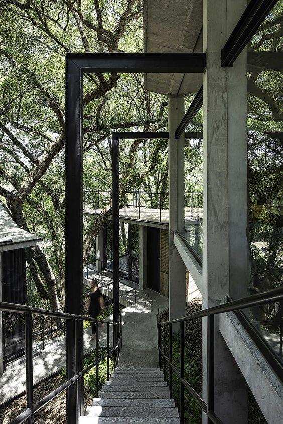 树林中的建筑