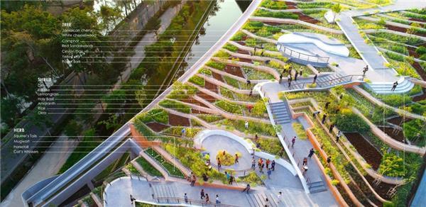 泰国国立法政大学屋顶有机农场