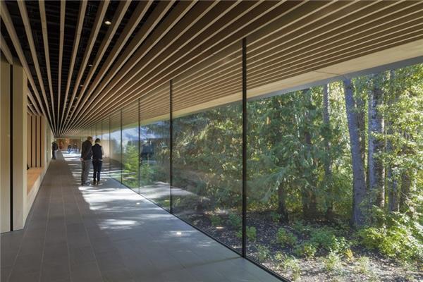 Audain艺术博物馆(2018年AIA建筑荣誉奖)
