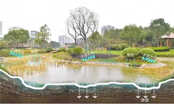 浦东新区临港口袋公园改造