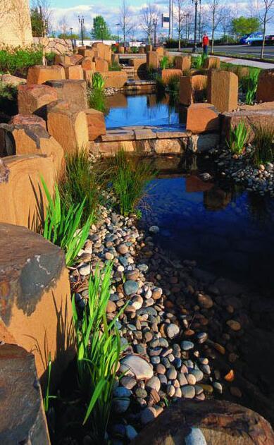 美国波特兰雨水花园_3593057