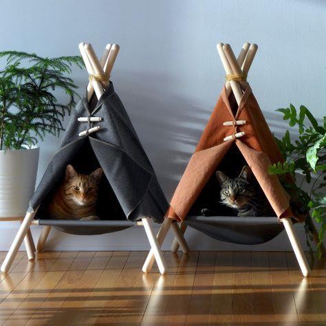 给猫一个舒服的窝