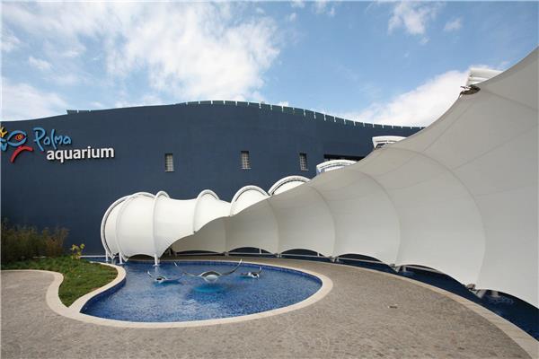 帕尔马水族馆