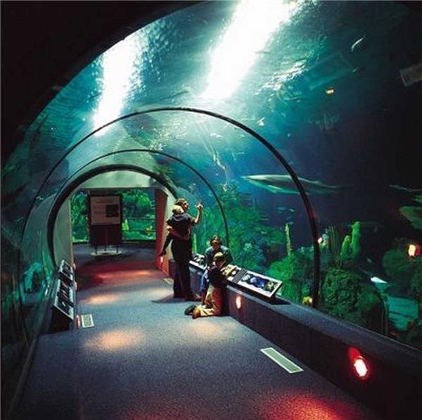 穆迪花园水族馆