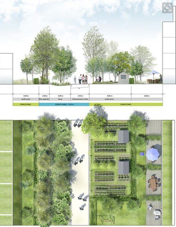 城市道路绿化和剖面设计_441759
