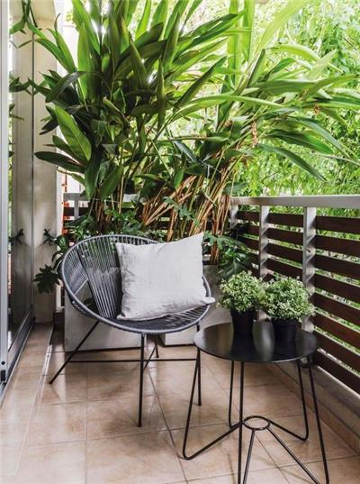 热带风格的阳台