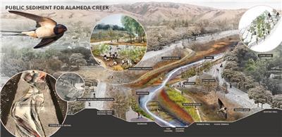 阿拉米达溪公共沉积物计划